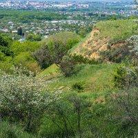 Окрестность моего города :: Игорь Сикорский