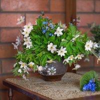 Весенний букет из ветреницы садовой. :: Елена Струкова