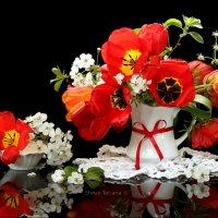 Алые тюльпаны :: Татьяна Беляева