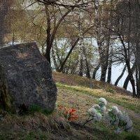 Мечта М.Цветаевой лежать на берегу Оки не сбылась. :: Татьяна Помогалова