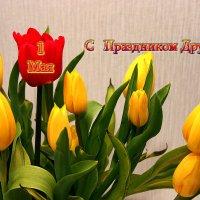 С молодым звенящим маем!  День весны и день труда! :: Mila .