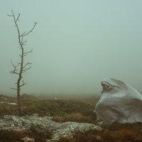 дух горы :: Андрей Кабачек