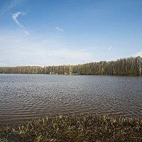 Черноголовский пруд :: Виктор Филиппов