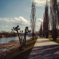 На набережной Тамбова.......... :: Александр Селезнев