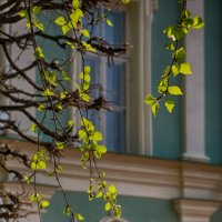 Весна в Кусково. На фоне Итальянского павильона. :: Надежда Лаптева