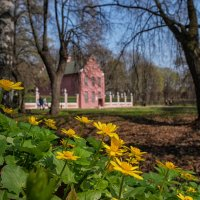 Весна в Кусково :: Надежда Лаптева