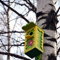Хороша квартирка, но шурупчиками к дереву нельзя( :: Катерина Клаура