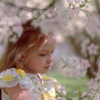 Весна :: Ирина Беленкевич