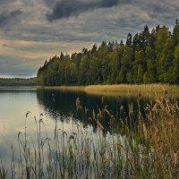 осеннее настроение в июне... :: Uladzimir Mikhaliuk