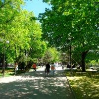 Весенняя прогулка на Пушкинском бульваре... :: Тамара (st.tamara)