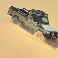 В Пустыне Намиб.  Африка. :: Jakob Gardok