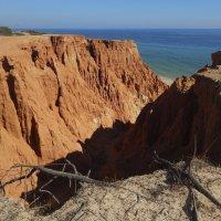 Закат на побережье Атлантики. :: Лариса (Phinikia) Двойникова