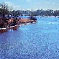 городские водоемы :: Наталия П