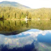 Карпати озеро Синивір :: Степан Карачко