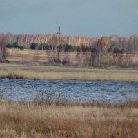 Озеро Рябовское, Алтайский край :: Светлана Рябова-Шатунова