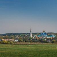 Задонский Рождество-Богородицкий мужской монастырь. :: Nyusha