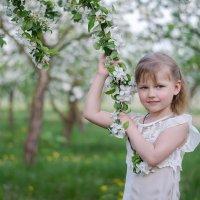 Яблоневый сад :: Марина Климович
