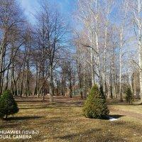 Нижний парк Петродворца. :: Подруга Подруга