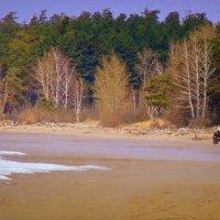 На берегу в мае . :: Мила Бовкун