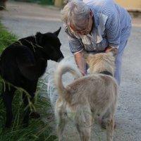 В пансионате для пожилых :: Марина Щуцких