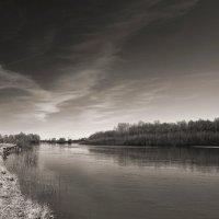 Зачарованная весна. :: Андрий Майковский