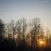 Восход :: Виктория Большагина