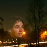 Зимние сны :: Наталия Соколова