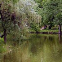 Весенний этюд в праздничный день. :: barsuk lesnoi