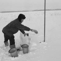 Добыча водицы :: Светлана Рябова-Шатунова
