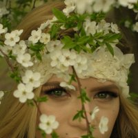 весна :: Elena Zimma