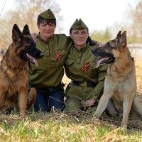 Я немецкая, а я восточник! :: Владимир Куликов