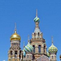 Купола храма Спаса на крови! :: ирина