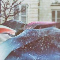 зонтики :: Vladimir Zhavoronkov