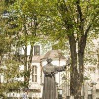 Несвиж. Памятник Симону Будному. :: bajguz igor