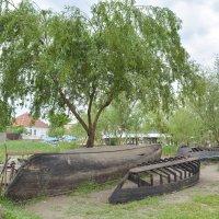 Лодки прохудившиеся :: Yelena LUCHitskaya