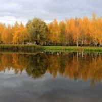 Отражение на воде :: Сергей