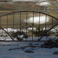 Зимнее солнце в пруде :: Syntaxist (Светлана)