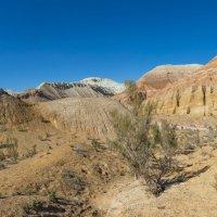 Меловые горы Актау :: Dmitriy Sagurov
