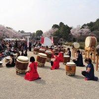 Японские барабаны тайко :: Swetlana V
