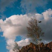 Облака, послушные ветру! :: Ирина