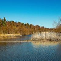 Весенний Каркуль :: Виктор Заморков
