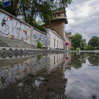 граффити и лужа :: Игорь Козырин