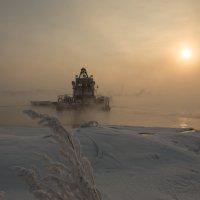 туман :: Ольга Горд