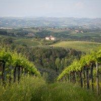 Весна в Тоскане :: Алекс Римский
