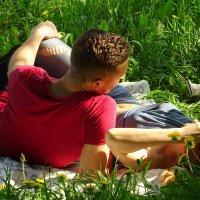 Отдых на траве :: Ирина Via