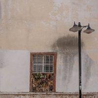 The Wall :: Katya Cukurova