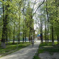 Нежность весны :: Анатолий Кувшинов