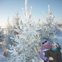 Новогодняя ёлочка для зверюшек. :: Елена Салтыкова(Прохорова)
