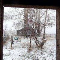 Первый снег - вид из-за дверей :: Светлана Рябова-Шатунова