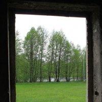 зелёное окно :: Валерий Хинаки